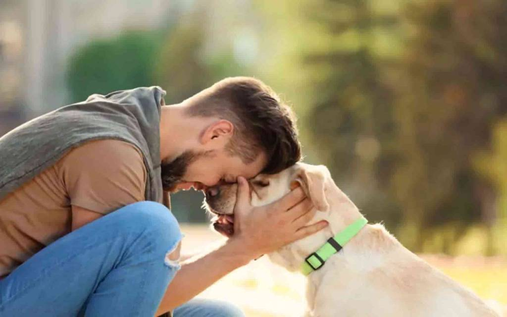 अगर आपको कुत्तों से है प्यार तो कमा सकते हैं 29 लाख रुपये